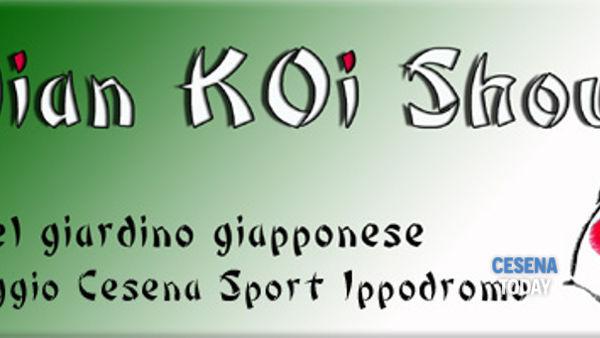 Italian koi show 2015 al Cesena Sport Ippodromo