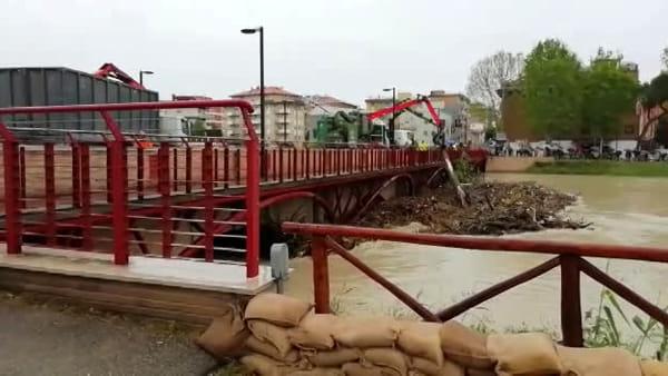 Piena del Savio, le operazioni di pulizia del Ponte Nuovo da rami e tronchi sotto le arcate