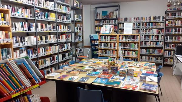 """Gruppi di lettura e incontri con gli studenti, tornano gli appuntamenti con """"Nati per leggere"""""""