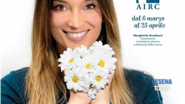 Anche a Cesena arriva una Margherita per Airc, un fiore per la ricerca