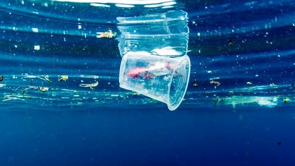 """Rifiuti in mare e pesca, si riflette sul futuro dell'ambiente a """"Spiaggialonga"""""""
