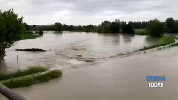 Esondazione del fiume Savio: la situazione vista da via Torino