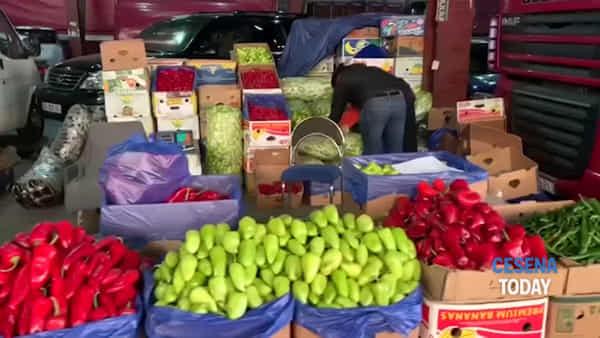 Macfrut in Caucaso: le agricolture in trasformazione di Armenia e Georgia saranno presenti alla fiera